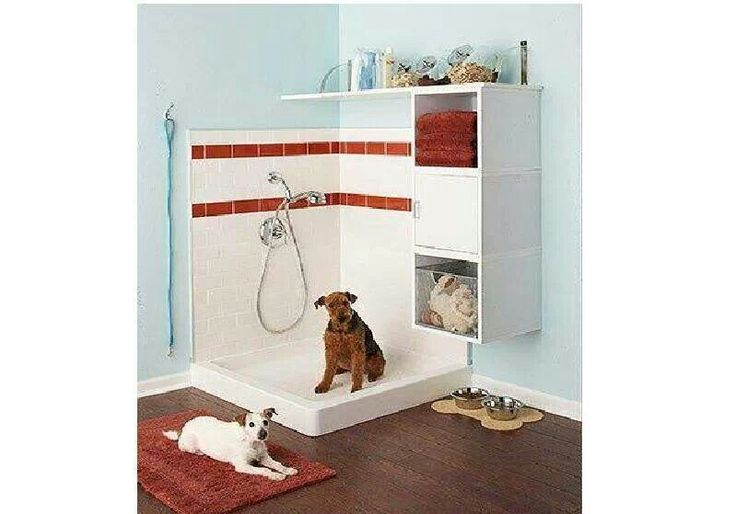 Design ideas remodel san antonio - Pets for small spaces style ...